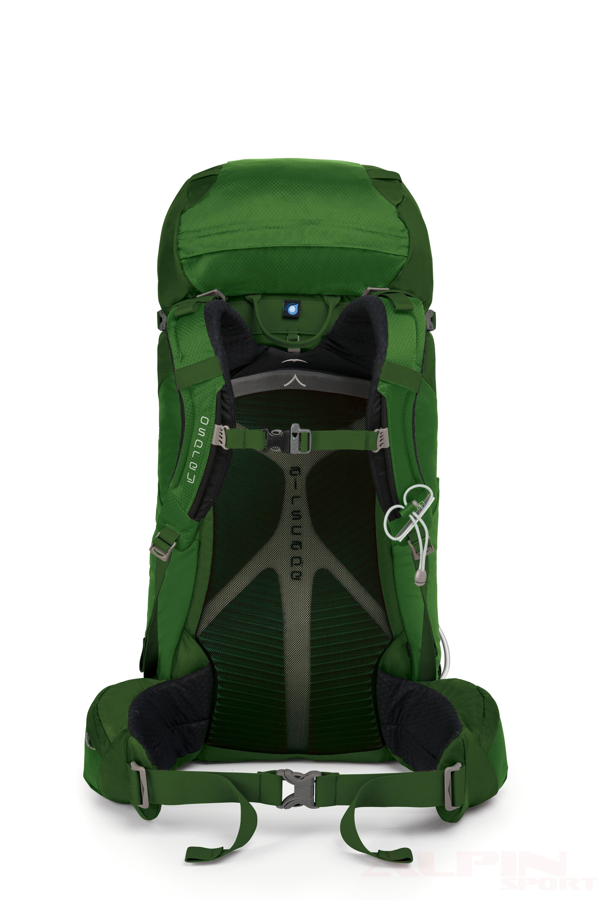 Plecak OSPREY Kestrel 48 M/L kestrel_48_jungle_green_back_01_1