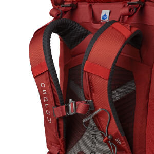 Plecak OSPREY Kestrel 48 M/L 3 osprey backpacks osprey kestrel 48 backpack dragon red 4